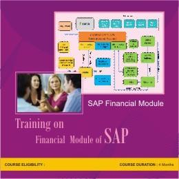SAP Financial Module